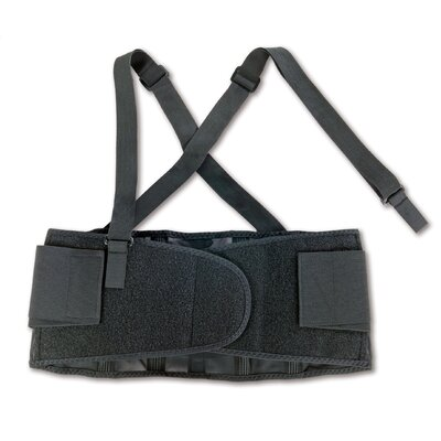 Ergodyne ProFlex 100 Economy Back Support in Black