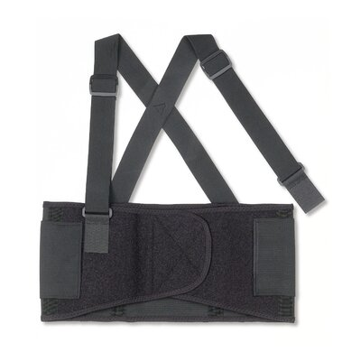 Ergodyne ProFlex® 1650 Economy Elastic Back Support in Black