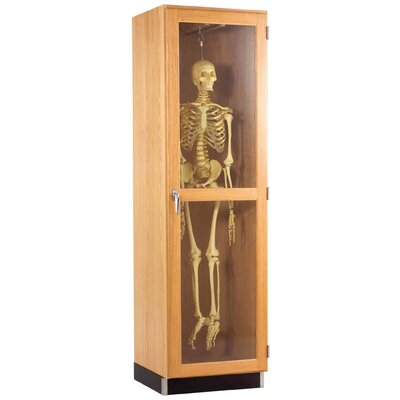 Diversified Woodcrafts Hanging Skeleton Cabinet