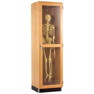 Diversified Woodcrafts Hanging Skeleton Cabinet