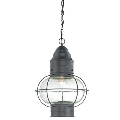 Quoizel Cooper 1 Light Outdoor Hanging Lantern
