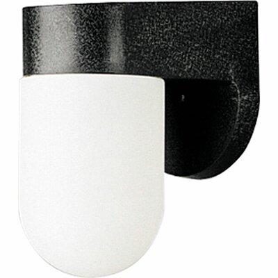 Progress Lighting Small Outdoor Incandescent 1 Light Outdoor Wall Lantern