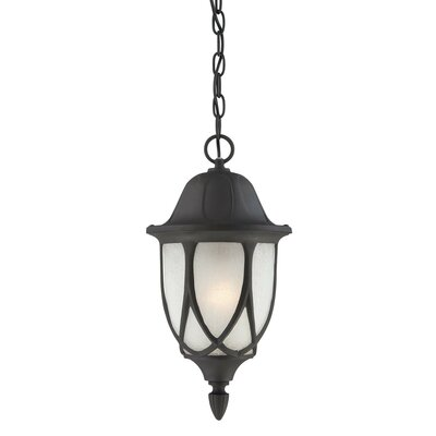Thomas Lighting Wiltshire 1x100W Outdoor Hanging Lantern in Black