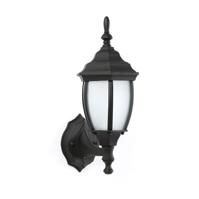 Thomas Lighting 1 Light Wall Lantern