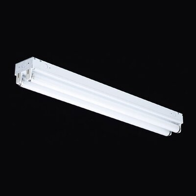 Thomas Lighting 2 Light Energy Saving Linear Flush Mount