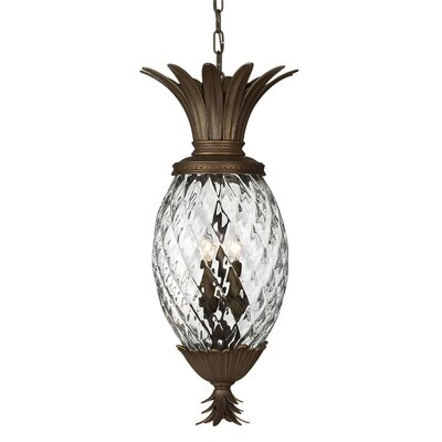 Hinkley Lighting Plantation 1 Light Pendant
