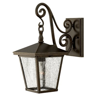 Hinkley Lighting Trellis One Light Small Outdoor Wall Lantern in Regency Bronze