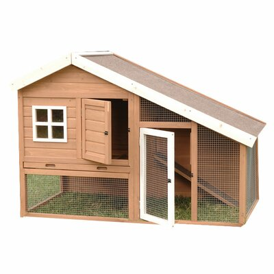 Precision Pet Cape Cod Chicken Coop Amp Reviews Wayfair