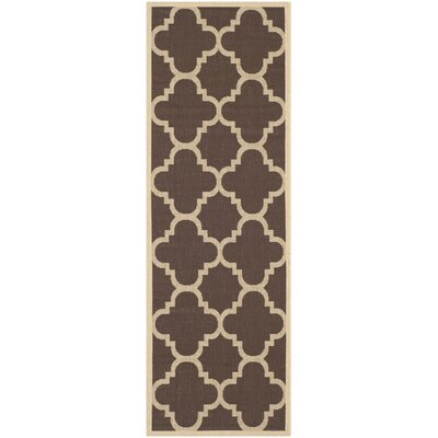 Courtyard Dark Brown Outdoor Rug