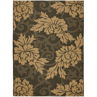 Safavieh Courtyard Black/Natural Rug
