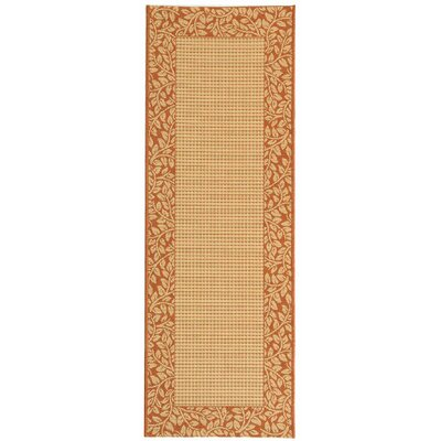Safavieh Courtyard Brown / Natural Rug