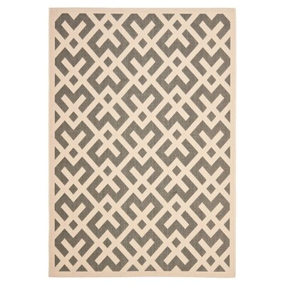 Safavieh Courtyard Grey / Bone Rug
