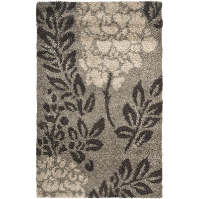 Florida Shag Smoke/Dark Brown Rug