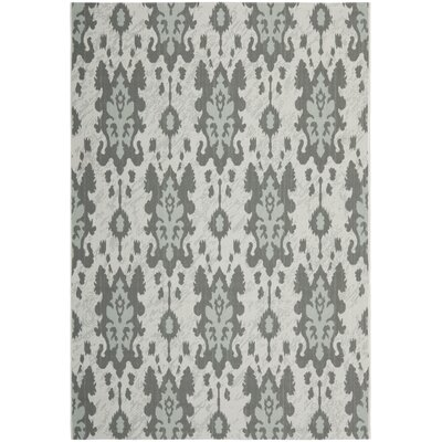 Safavieh Courtyard Light Grey Anthracite/Aqua Weft Rug