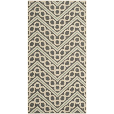 Safavieh Hampton Dark Grey / Ivory Outdoor Rug