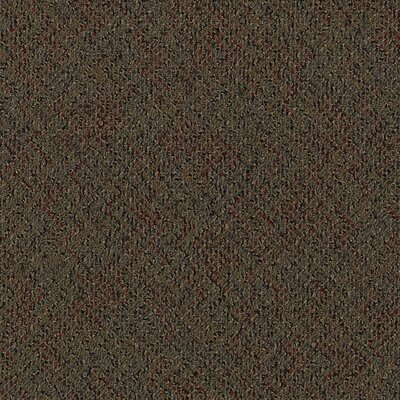 "Mohawk Flooring Aladdin Energized 24"" x 24"" Carpet Tile in Firewall"