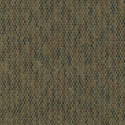 "Mohawk Flooring Aladdin Charged 24"" x 24"" Carpet Tile in Enviro"