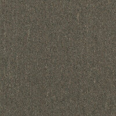 "Mohawk Flooring Aladdin Voltage 24"" x 24"" Carpet Tile in Resources"