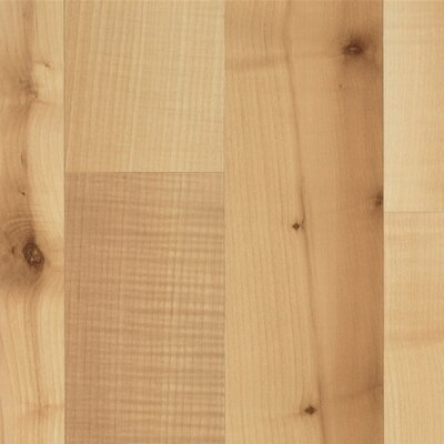 Mohawk Flooring Elements Bellingham 8mm Maple Laminate in Bright Plank