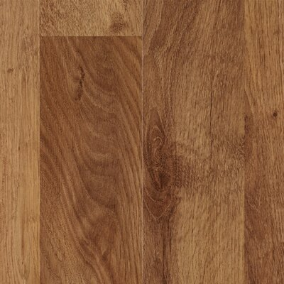 Mohawk Flooring Elements Bellingham 8mm Red Oak Laminate in Antique Barn Plank