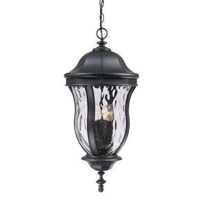 Savoy House Monticella  Outdoor Hanging Lantern in Black