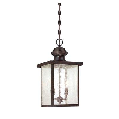 Savoy House Farley 2 Light Outdoor Hanging Lantern Reviews Wayfair