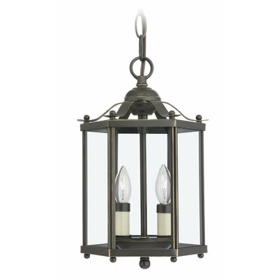 Sea Gull Lighting 2 Light Foyer Pendant Reviews Wayfair