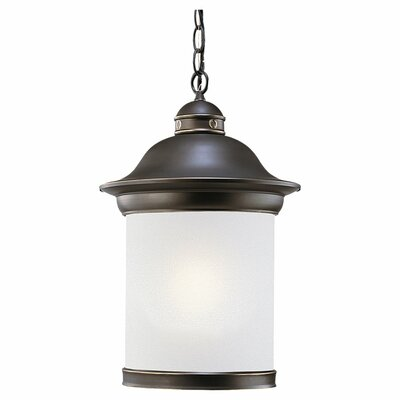 Sea Gull Lighting Hermitage 1 Light Outdoor Pendant