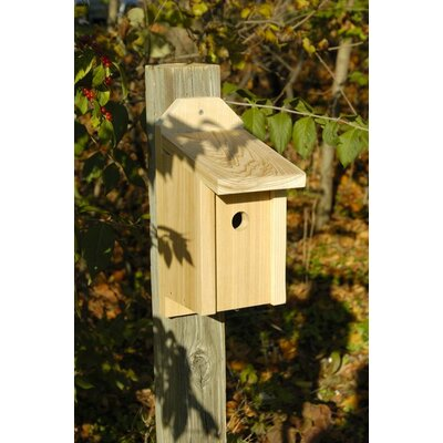 Heartwood Joy Box Bird House