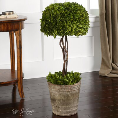 Uttermost Preserved Ceramic Tree Topiary Planter