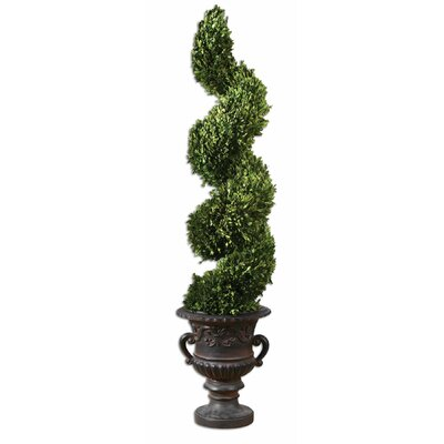 Uttermost Spiral Preserved Boxwood Spiral Topiary in Urn