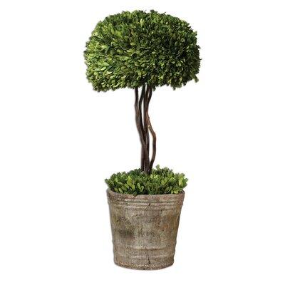 Uttermost Preserved Ceramic Tree Topiary Planter