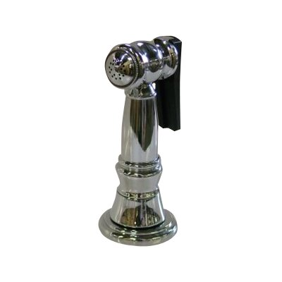 Elements of Design Brass Kitchen Side Sprayer with Hose