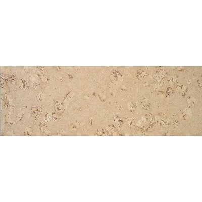 "APC Cork Assortment 0.75"" x 0.75"" Quarter Round in Odysseus Creme"