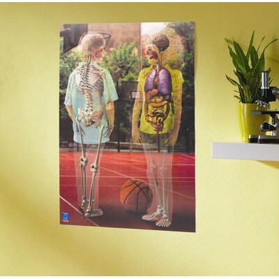 Educational Insights Inside Out Lenticular Human Body Poster