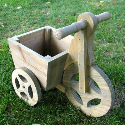 Tricycle Novelty Wheelbarrow Planter