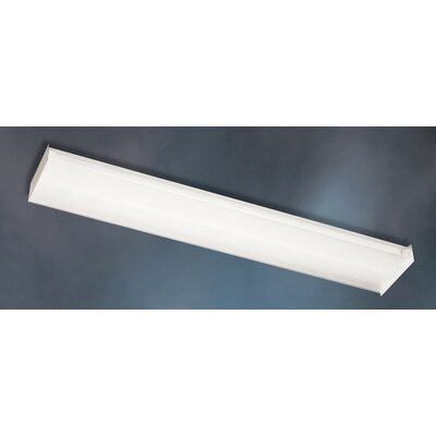 Utility 2 Light Linear Strip