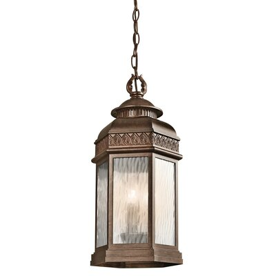 Edison 1 Light Outdoor Small Hanging Pendant