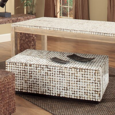 Jeffan Cocoa Trunk Coffee Table