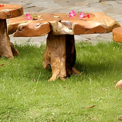 Jeffan Natura Coffee Table