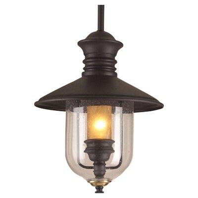 Troy Lighting Old Town 1 Light Hanging Lantern