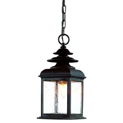 Troy Lighting Adams 1 Light Hanging Lantern