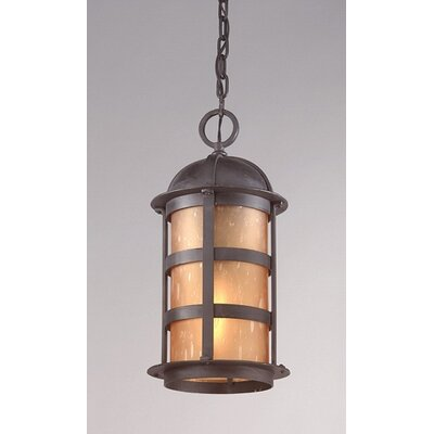 Troy Lighting Aspen 1 Light Hanging Lantern