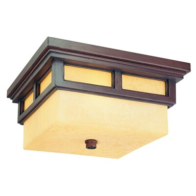 Troy Lighting Cottage Grove 2 Light Flush Mount