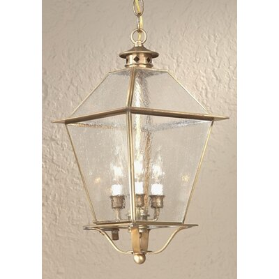 Troy Lighting Montgomery 3 Light Hanging Lantern