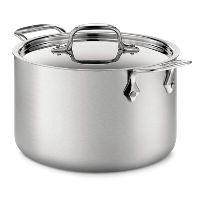 d5 Brushed Stainless Steel 4-qt. Soup Pot with Lid