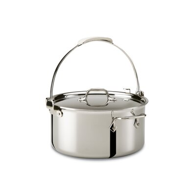 All-Clad Stainless Steel 8-qt. Pouring Stock Pot with Lid