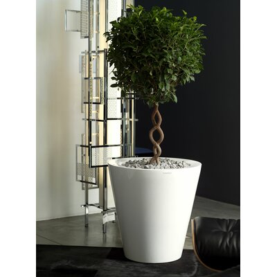 Aire Cono Round Flower Pot Planter