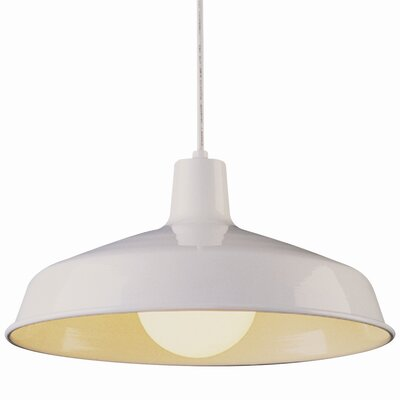 TransGlobe Lighting Back To Basics 1 Light Pendant