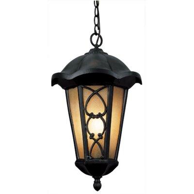 Outdoor Hanging Lights Wayfair